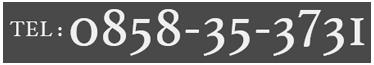 TEL.0858-35-3731
